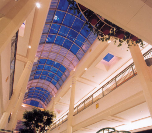 Lighthouse Electric | South Hills Village | Section of the Skylights